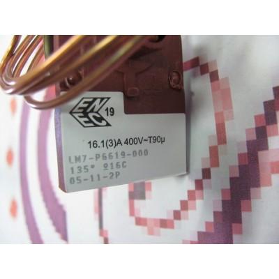 Spalinový termostat  RS528